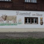 Stall Tufertschwil 003